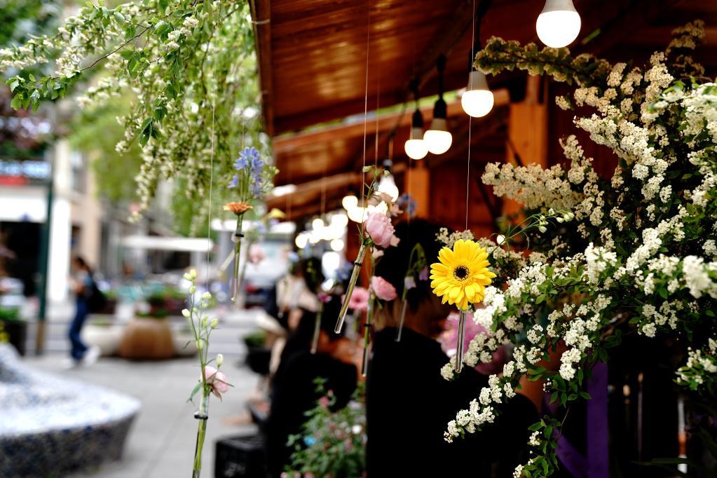 上海:社区花园节受欢迎