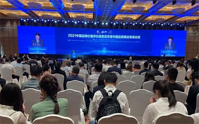 中国地级市品牌百强在2021中国品牌日系列活动上发布