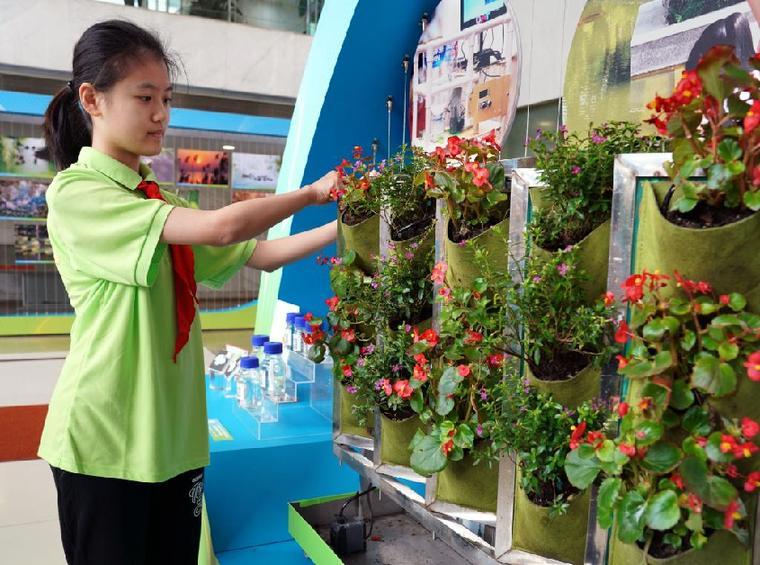 上海:青少年争做零碳先锋