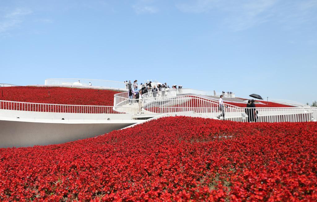 第十屆中國花卉博覽會在上海崇明開幕