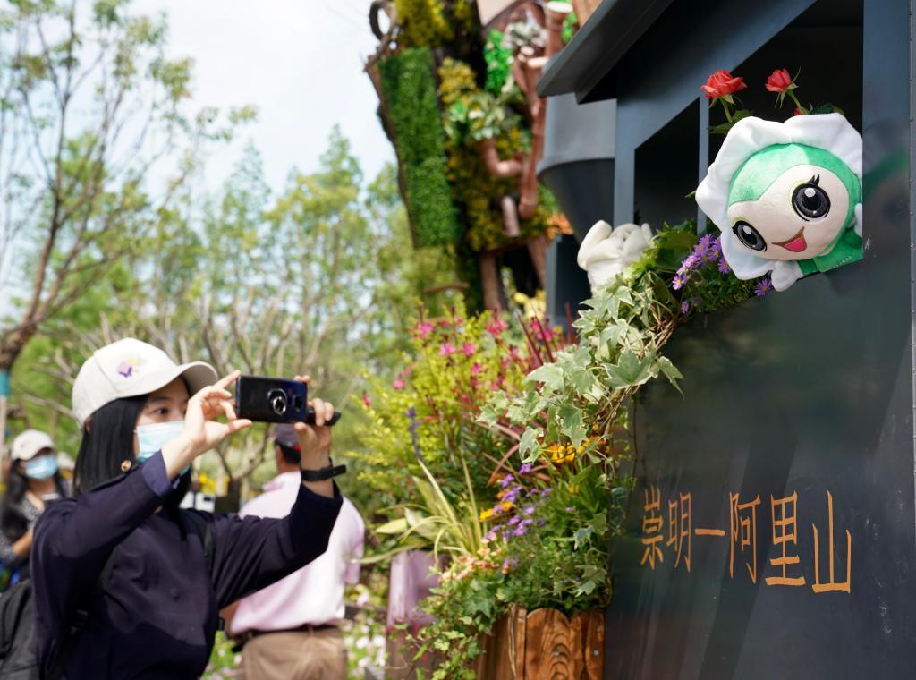 """满载鲜花的""""阿里山小火车""""驶上崇明岛——第十届中国花博会台湾展园掠影"""